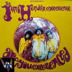 Jimi Hendrix ‎– Are You Experienced - Vinil, LP, Album, RM, Stereo, 200 g