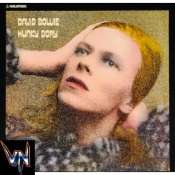 David Bowie [Pré-Venda] – Hunky Dory - Vinil, LP, Album, RM, 180g