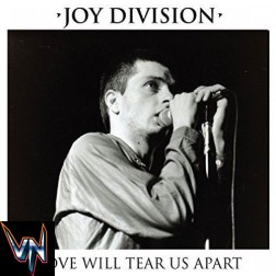 "Joy Division ‎– Love Will Tear Us Apart - Vinil, 7"", Single, Reissue"